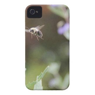 Hummel-Biene iPhone 4 Case-Mate Hülle