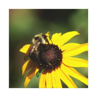Hummel-Biene und Blume, eingewickelter Leinwanddruck