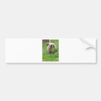 Hummel-Kaninchen Autoaufkleber