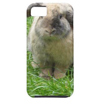 Hummel-Kaninchen Etui Fürs iPhone 5