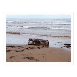 Hummer-Falle als Treibholz Postkarte