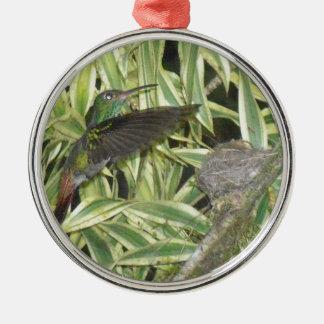 humming_bird silbernes ornament