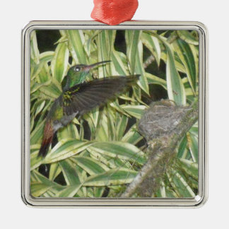 humming_bird silbernes ornament