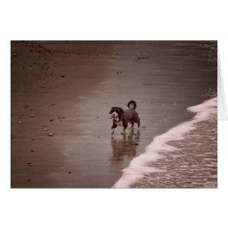 Hund auf dem StrandSepia tonte freien Raum Karte