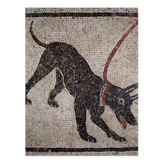 Hund auf einer Leine, von Pompeji Postkarte