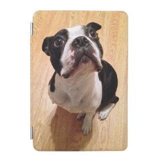 Hund Bostons Terrier iPad Mini Hülle
