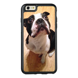 Hund Bostons Terrier OtterBox iPhone 6/6s Plus Hülle