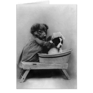 Hund, der Hund badet Karte