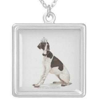 Hund, der mit einer Tiara auf Kopf sitzt Versilberte Kette
