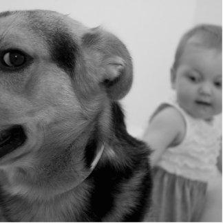 Hund Fotoskulptur Button