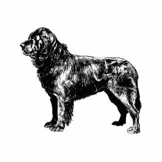 Hund Freistehende Fotoskulptur