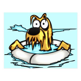 Hund im Lebensretter-Floss Postkarte