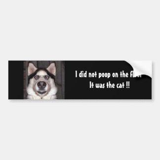 Hund, kackte ich nicht auf dem Boden, den es die Autoaufkleber