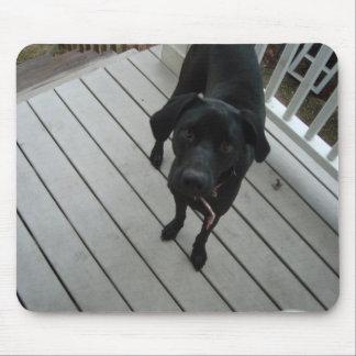 Hund Mauspads