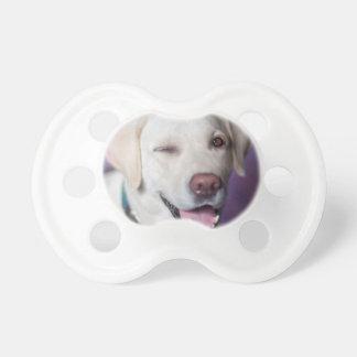 Hund Schnuller