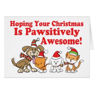 Hund- u. Katzen Pawsitively fantastisches Karte