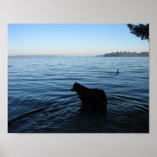 Hund und der Mount Rainier von Penrose Poster