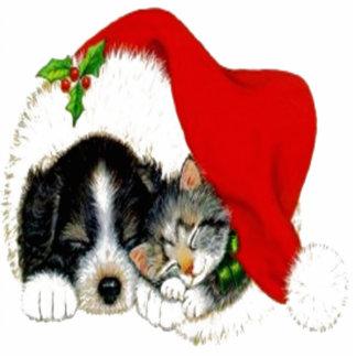 Hund und Katze, die Weihnachtsmannmütze teilen Freistehende Fotoskulptur