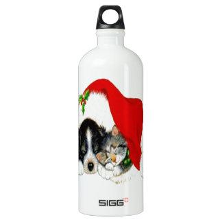 Hund und Katze, die Weihnachtsmannmütze teilen Wasserflasche