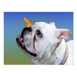 Hund und Schmetterling Postkarte