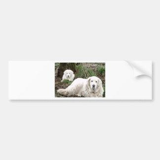 Hund und Welpe großer Pyrenäen Autoaufkleber