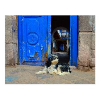 Hund wartete vor blauer Tür, Cusco, Peru Postkarte