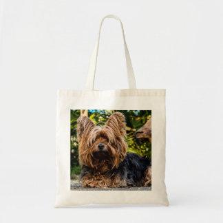 Hund Yorkshires Terrier Tragetasche
