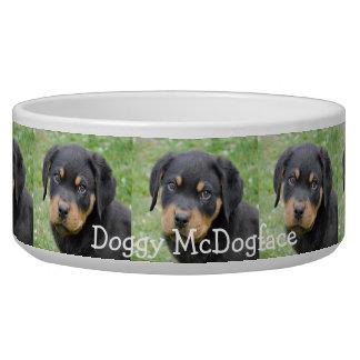 Hündchen McDogface Rottweiler Welpe Napf