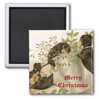 Hunde, die mit Weihnachtsmistelzweig u. heiliger Quadratischer Magnet