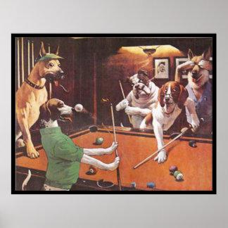 Hunde, die Pool - den verkratzenden Beagle spielen Poster