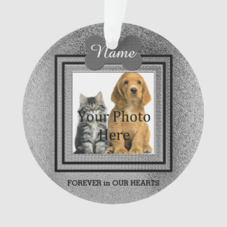 Hunde-oder Katzen-silberne perfekte Erinnerungen Ornament
