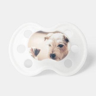 Hunde Schnuller
