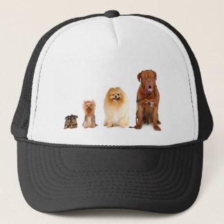 Hunde Truckerkappe