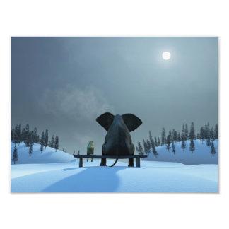 Hunde-und Elefant-Freund-Foto-Druck Kunstphotos