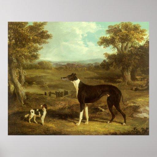 Hunde, Windhund und Spaniel; Doktor Fop durch Heri Plakatdrucke