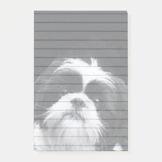 Hundeder post-itanmerkungen 4X6 Shih Tzu Auflage Post-it Klebezettel