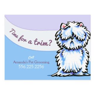 HundeGroomer schäbige Westie Anzeige-Werbung Postkarte