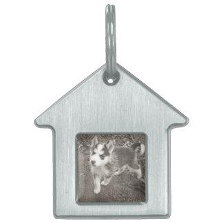 Hundehaus-Erkennungsmarke/Schlüsselkette durch Dal Tiermarke