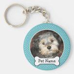 Hundeknochen und blauer Polka-Punkt-Haustier-Foto-