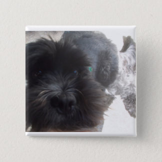 Hundeknopf (cocker spaniel) quadratischer button 5,1 cm