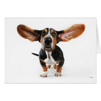 Hundelange Ohren Karte