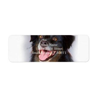 Hundemalerei - Hundekunst - pet Kunst