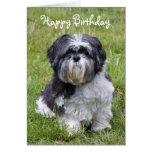 Hundeniedliche alles- Gute zum Geburtstaggrußkarte Grußkarte