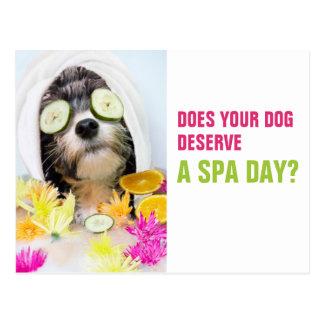 Hundepflegen Postkarte-Wellness-Center Postkarte