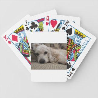 Hundeshirt Bicycle Spielkarten