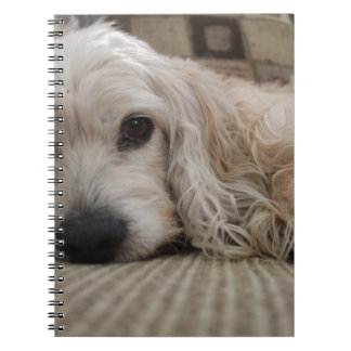 Hundeshirt Spiral Notizblock