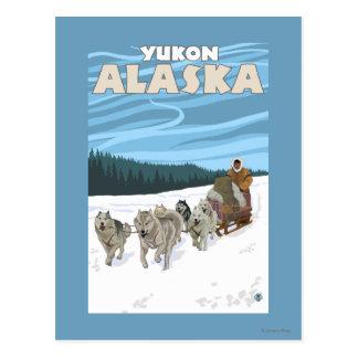 HundeSledding Szene - Yukon, Alaska Postkarte