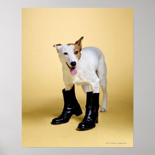 Hundetragende Stiefel Poster