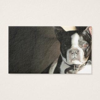 HundeVisitenkarte Visitenkarte