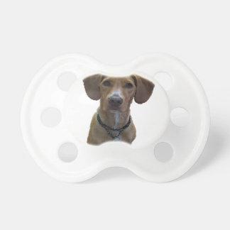 Hundezeichnung Schnuller